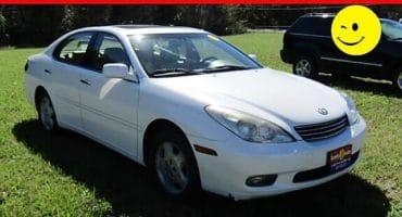 Lexus White